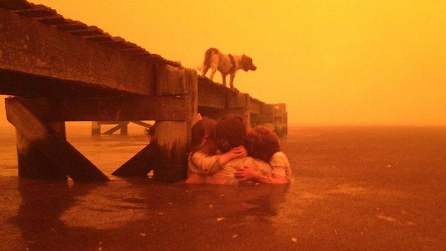 Dunalley Bushfire