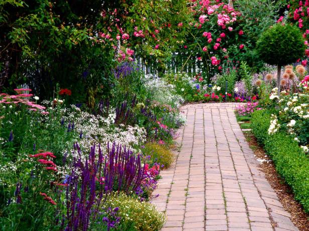 A scented Garden