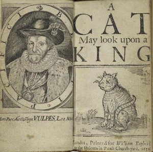 a-cat-may-look-upon-a-king