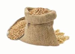 wheat-bag