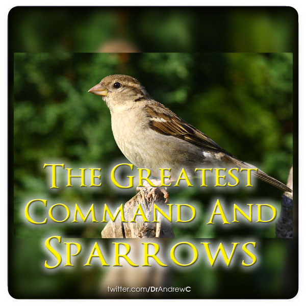 THE GREATEST COMMAND AND SPARROWS