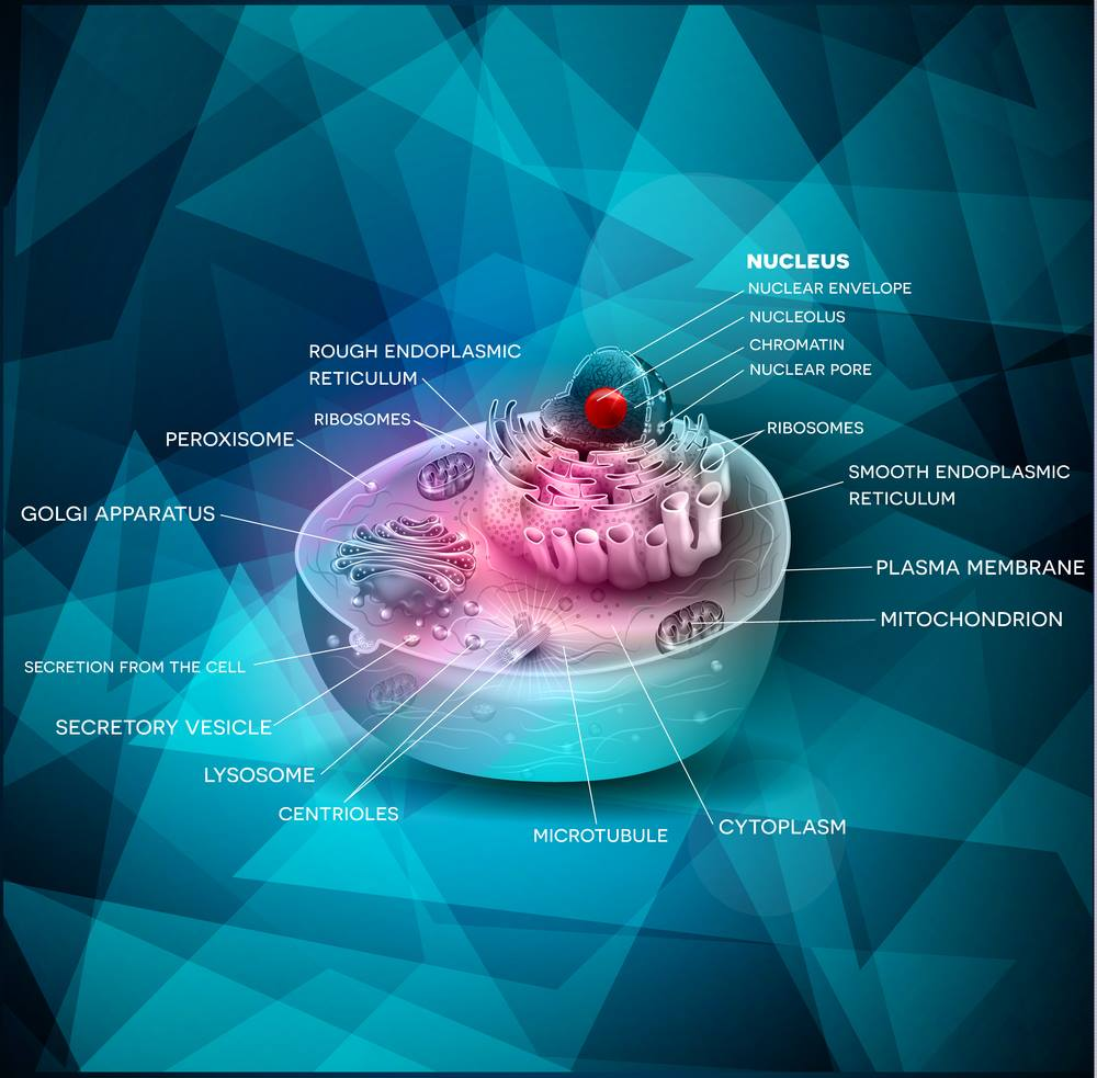 The Cell's Design, by Dr. Fazale Rana