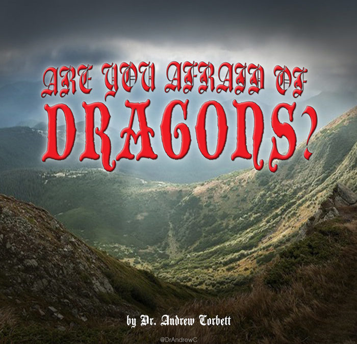ARE YOU AFRAID OF DRAGONS?