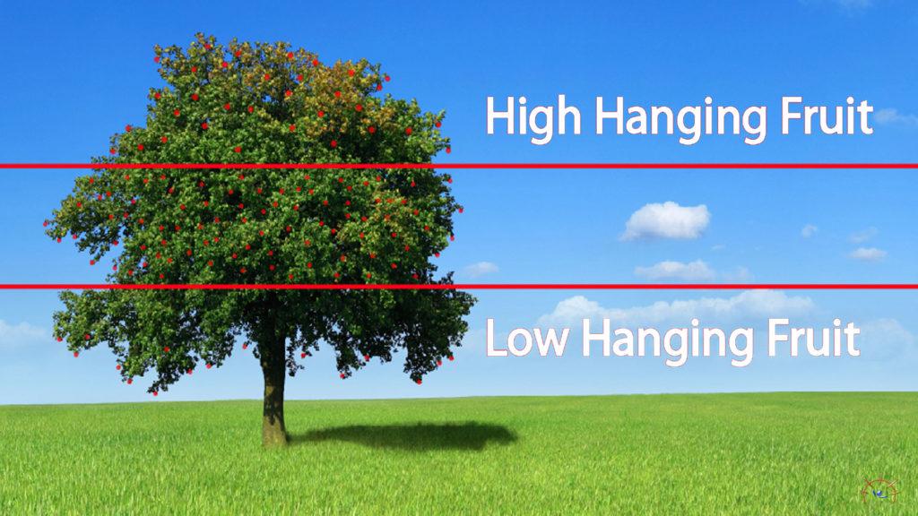 A fruit tree