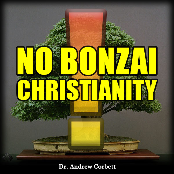 NO BONZAI CHRISTIANITY